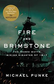 Book Cover for FIRE AND BRIMSTONE