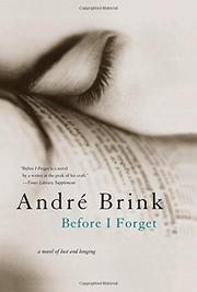 Cover art for BEFORE I FORGET