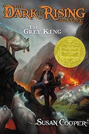 Cover art for THE GREY KING