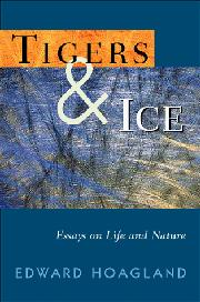 Cover art for TIGERS AND ICE