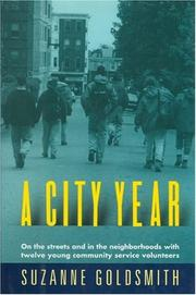 A CITY YEAR by Suzanne Goldsmith