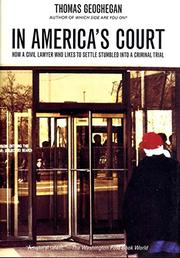 IN AMERICA'S COURT by Thomas Geoghegan