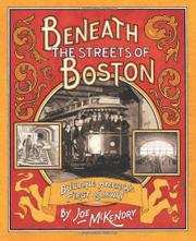Book Cover for BENEATH THE STREETS OF BOSTON
