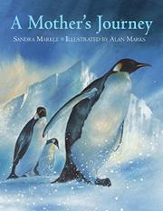 Cover art for A MOTHER'S JOURNEY