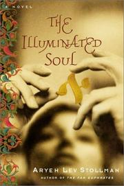 THE ILLUMINATED SOUL by Aryeh Lev Stollman