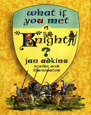Book Cover for WHAT IF YOU MET A KNIGHT?