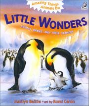 LITTLE WONDERS by Marilyn Baillie