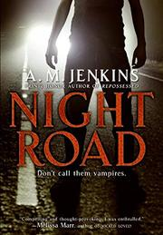 Book Cover for NIGHT ROAD