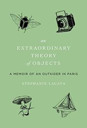 Cover art for AN EXTRAORDINARY THEORY OF OBJECTS
