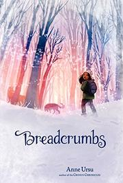 Book Cover for BREADCRUMBS