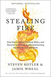 STEALING FIRE by Steven Kotler