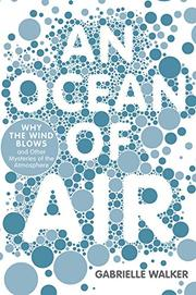 AN OCEAN OF AIR by Gabrielle Walker