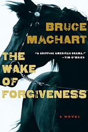 Book Cover for THE WAKE OF FORGIVENESS