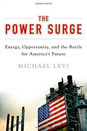 THE POWER SURGE by Michael Levi