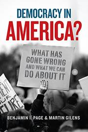 DEMOCRACY IN AMERICA? by Benjamin I. Page