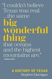 BIG WONDERFUL THING by Stephen Harrigan