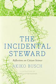 THE INCIDENTAL STEWARD by Akiko Busch