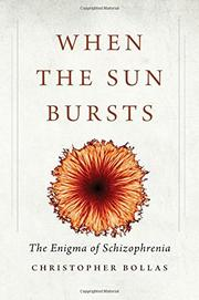 WHEN THE SUN BURSTS by Christopher Bollas