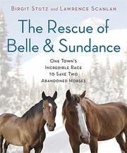 THE RESCUE OF BELLE AND SUNDANCE by Birgit Stutz
