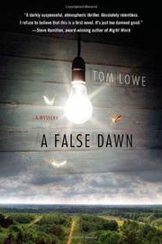 A FALSE DAWN by Tom Lowe