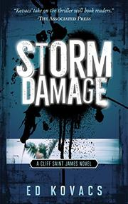 Book Cover for STORM DAMAGE