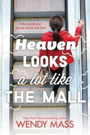 HEAVEN LOOKS A LOT LIKE THE MALL by Wendy Mass