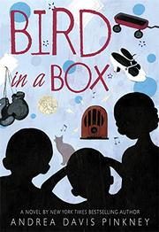 Book Cover for BIRD IN A BOX