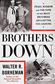 BROTHERS DOWN by Walter R. Borneman