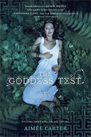 Book Cover for THE GODDESS TEST