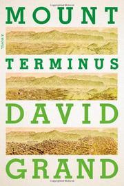 MOUNT TERMINUS by David Grand