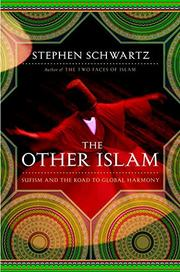 Cover art for THE OTHER ISLAM