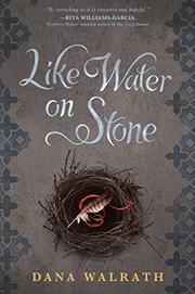 LIKE WATER ON STONE by Dana Walrath