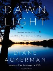 Cover art for DAWN LIGHT