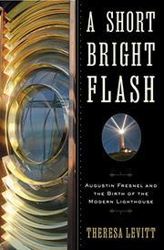 A SHORT BRIGHT FLASH by Theresa Levitt