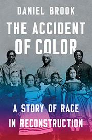 THE ACCIDENT OF COLOR by Daniel Brook