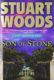 Cover art for SON OF STONE