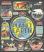 THE WONDROUS WORKINGS OF PLANET EARTH by Rachel  Ignotofsky