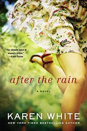 Cover art for AFTER THE RAIN