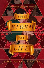 THE STORM OF LIFE by Amy Rose Capetta