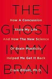 THE GHOST IN MY BRAIN by Clark Elliott