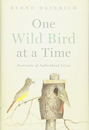ONE WILD BIRD AT A TIME by Bernd Heinrich
