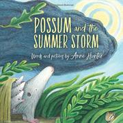 POSSUM AND THE SUMMER STORM by Anne Hunter