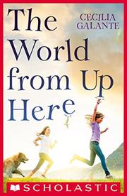 THE WORLD FROM UP HERE by Cecilia Galante