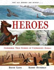 HEROES by David Long