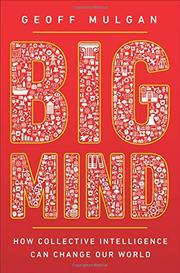 BIG MIND by Geoff  Mulgan