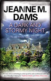 Book Cover for A DARK AND STORMY NIGHT
