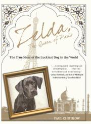 Book Cover for ZELDA, THE QUEEN OF PARIS