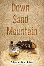 Book Cover for DOWN SAND MOUNTAIN