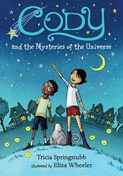 CODY AND THE MYSTERIES OF THE UNIVERSE by Trisha Springstubb