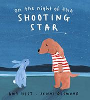 ON THE NIGHT OF THE SHOOTING STAR by Amy Hest